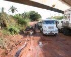 Os peridos da BR-155 - antiga PA-150 que passa por Xinguara