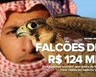 Sauditas disputam prêmio de R$ 124 mil em campeonato com falcões
